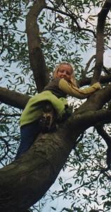 Erin tree