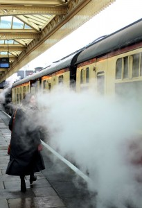train - steam platform